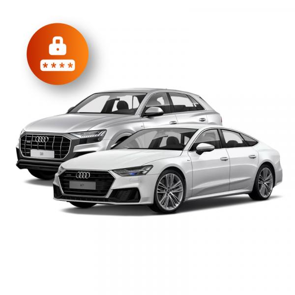 Audi Immobilizer